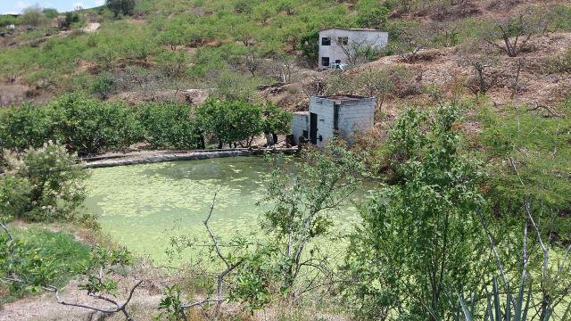 ¡Hallaron muerta y putrefacta a una persona en un tanque de agua en Aguascalientes!