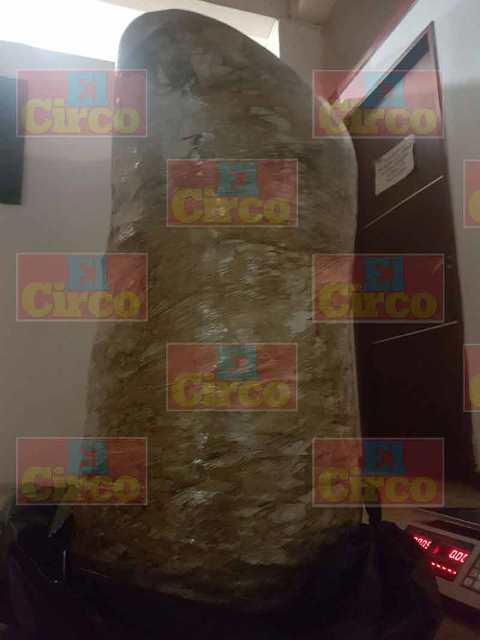 ¡Policías federales aseguraron más de 17 kilos de marihuana en Lagos de Moreno!