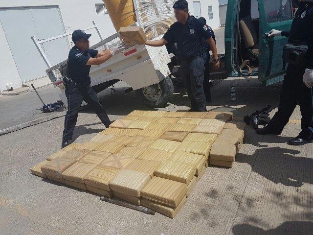 ¡Policía Federal aseguró más de 355 kilos de marihuana en el doble fondo de un camión abandonado en Zacatecas!