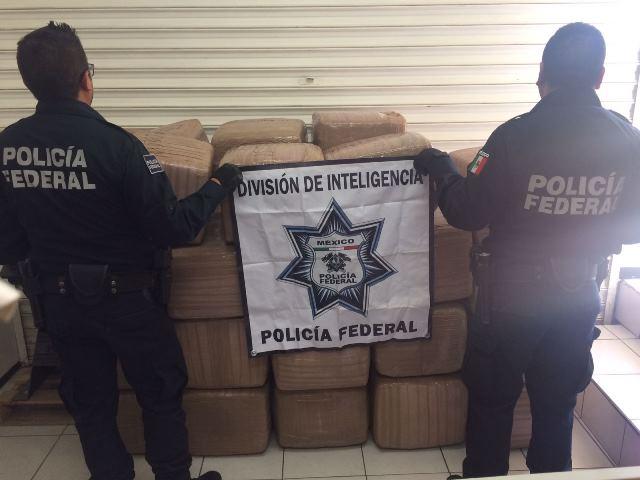 ¡Policía Federal interceptó cargamento de 558 kilos de marihuana en Zacatecas!