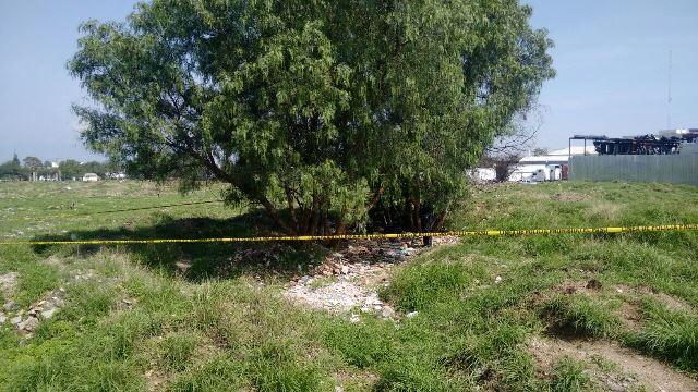 ¡Joven se ahorcó en un árbol en un predio de una empresa gasera en Aguascalientes!