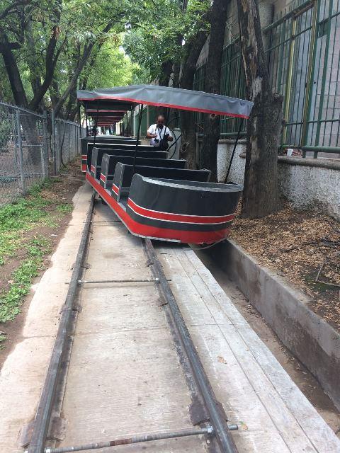¡Se descarriló el trenecito del parque Miguel Hidalgo en Aguascalientes!