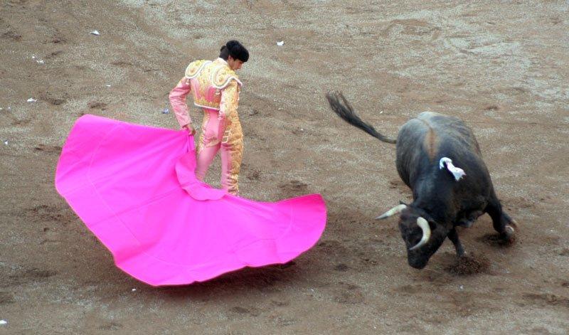 ¡Espectaculos Taurinos de México firma una exclusiva con el matador frances Sebastián Castella!