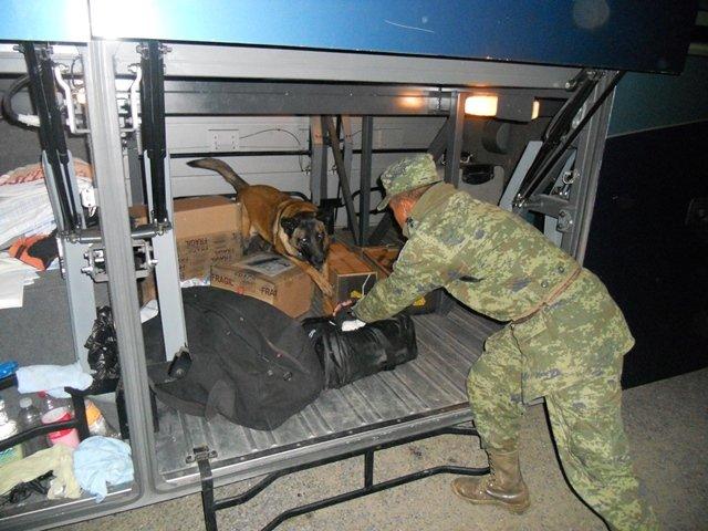 ¡Interceptaron 2 autobuses de pasajeros con narcóticos en Aguascalientes!