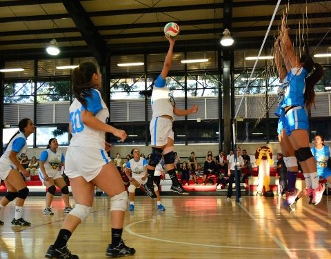 ¡Gran juego de estrellas de voleibol en la Liga Estatal Universitaria!