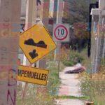 ¡Doble ejecución en Fresnillo: con rifles AR-15 asesinaron a 2 sujetos!