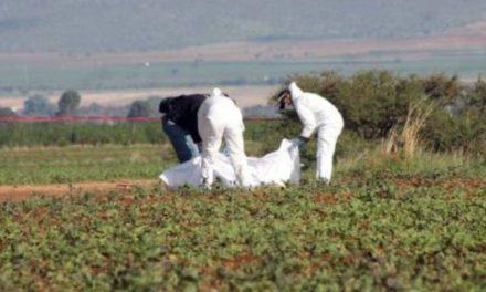 ¡Hallaron 3 cuerpos putrefactos dentro de una noria en Valparaíso, Zacatecas!