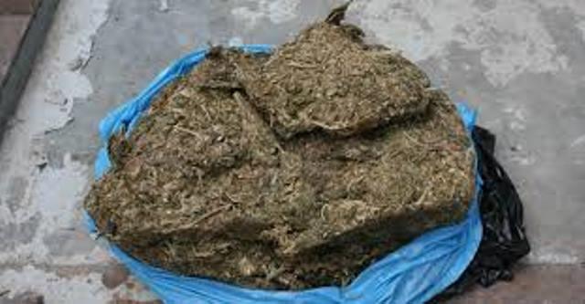 ¡Otro golpe al narcomenudeo en Aguascalientes: detuvieron a 2 sujetos con 1 kilo de marihuana!