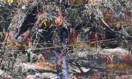 ¡Hombre se suicidó colgándose en un árbol en Fresnillo!
