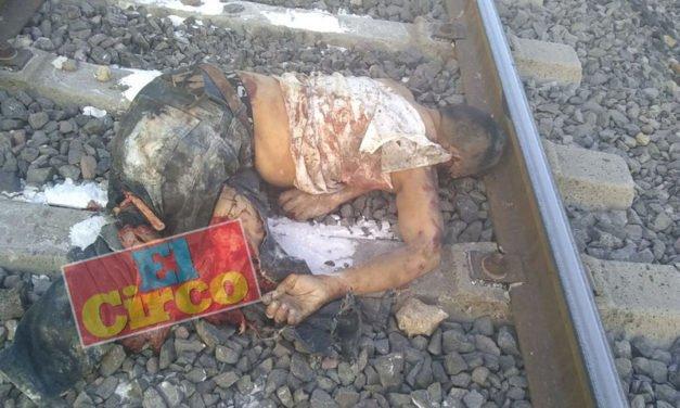 ¡Muere un hombre arrollado y semidestrozado por el tren en Lagos de Moreno!