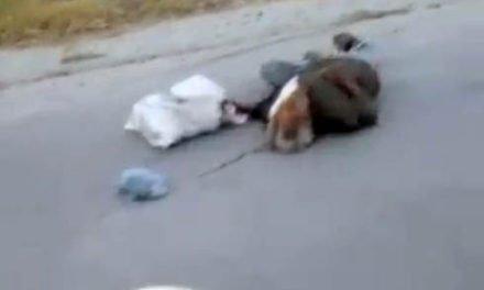 ¡Tres muertos y 5 lesionados tras sangrientos enfrentamientos en Teocaltiche!