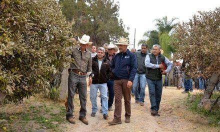 ¡Anuncia gobernador proyecto integral en apoyo a productores y trabajadores de cultivos siniestrados!