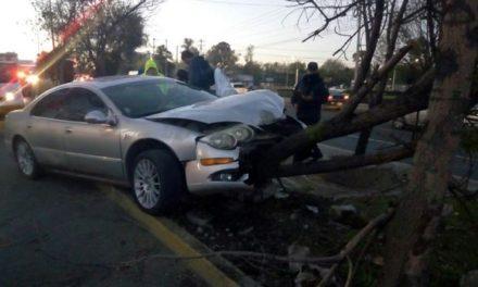 ¡Joven lesionado tras estrellar su auto contra una macetera de concreto y un árbol en Aguascalientes!