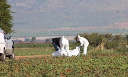 ¡El primer ejecutado del 2018 en Zacatecas fue hallado en la carretera Vetagrande-Bracho!