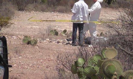 ¡A balazos ejecutaron a un joven en un terreno baldío en Fresnillo!