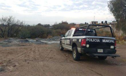 ¡Hombre se suicidó en Aguascalientes y su fiel mascota se mantuvo a su lado!