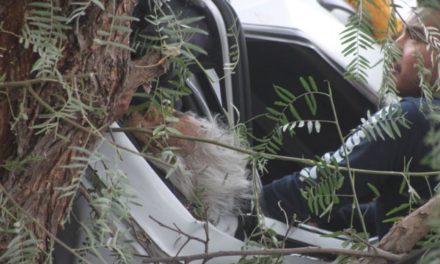 ¡Accidente de peregrinos de la Ciudad de México en Lagos de Moreno: 1 muerto y 6 heridos!