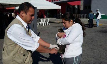 ¡Semana Nacional de Vacunación Antirrábica de Caninos y Felinos!