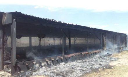 ¡Impresionante incendio en un rancho en Aguascalientes dejó grandes pérdidas materiales!