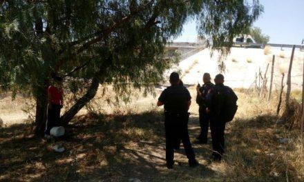 ¡Joven consumó el suicidio 38 del año en Aguascalientes tras colgarse en un árbol!
