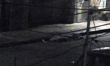 ¡Ataque armado contra familia en Fresnillo deja una mujer muerta y 4 heridos!