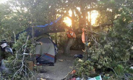 ¡Hallaron un campamento de un grupo delictivo y tres osamentas en Fresnillo!