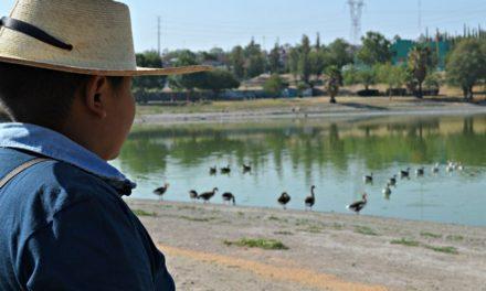 ¡Municipio participará en el Cuarto Festival de Aves que inicia este fin de semana!