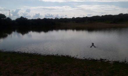 ¡Adolescente murió ahogado en un bordo en Aguascalientes ante la mirada de su hermano!