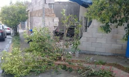 ¡Camión urbano se estrelló contra una casa en Aguascalientes!