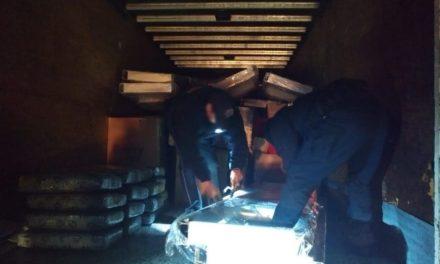¡La Policía Federal, con rayos X, detectó 200 kilos de marihuana en una camioneta de paquetería en Zacatecas!