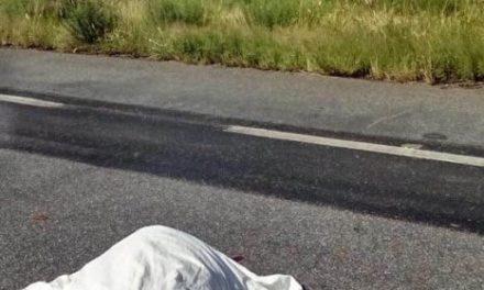 ¡Doble accidente carretero en Juan Aldama, Zacatecas, dejó 5 muertos y 1 lesionado!