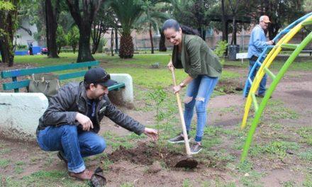 ¡Garantiza Ayuntamiento la sobrevivencia de árboles plantados en programa de reforestación!