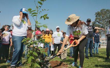 ¡400 mil árboles y plantas para reforestar Aguascalientes en esta administración: Tere Jiménez!