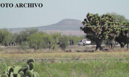 ¡Hombre se suicidó colgándose de un árbol en Guadalupe, Zacatecas!