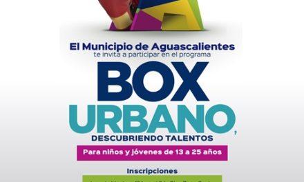 ¡Municipio de Aguascalientes busca nuevos talentos del boxeo!