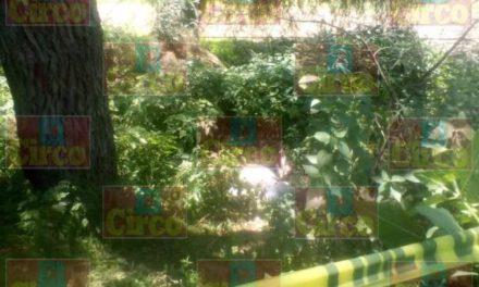 ¡Hallaron a otro hombre muerto y putrefacto atrás de la colonia La Huitlacocha, en Lagos de Moreno!