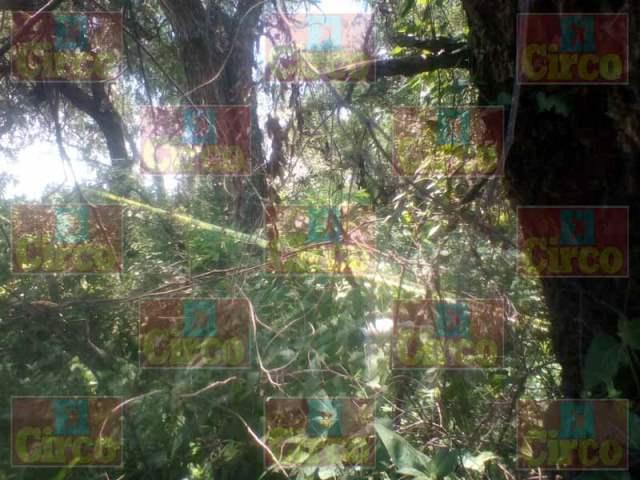 ¡Encontraron otro cuerpo putrefacto atrás de La Huitlacocha, en Lagos de Moreno!