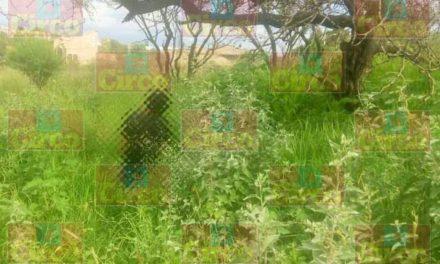 ¡Un hombre se suicidó colgándose de un árbol en Lagos de Moreno!