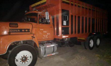 ¡Frustran robo de ganado de un rancho por un millón y medio de pesos en Aguascalientes!
