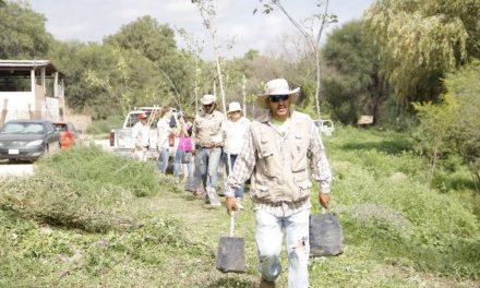 ¡Promueve Jesús María el cuidado del medio ambiente mediante jornadas de reforestación!