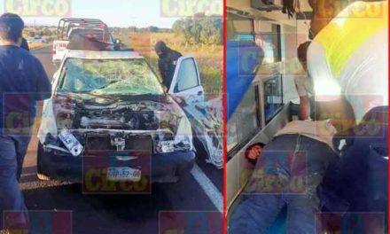 ¡Auto se impactó contra un semoviente en Ojuelos y un hombre y una mujer resultaron lesionados!