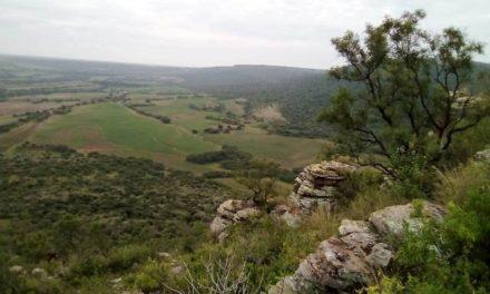 ¡Declaran en Pabellón de Arteaga 4,500 hectáreas como área natural protegida!