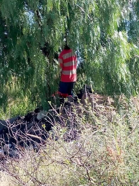 ¡Joven se colgó de la rama de un árbol en una terracería en Aguascalientes!
