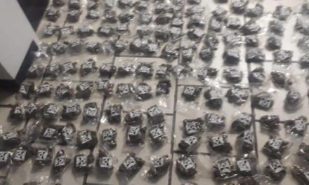 ¡La PEP aseguró, en Calera 1,200 bolsas con marihuana y detuvo a 2 personas!