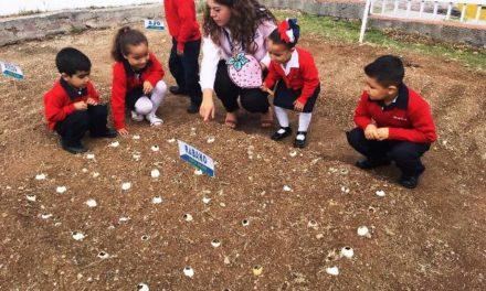 ¡Aprenden alumnos de preescolar a cultivar alimentos a través del programa Nutrición con Valor!