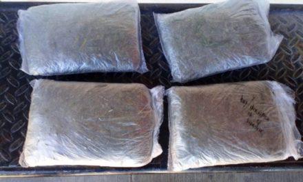 ¡Efectivos de la PEP detuvieron a un joven con 4 bolsas con marihuana frente al CIAIJ en Zacatecas!
