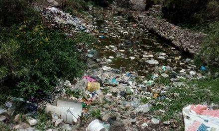 ¡Partido Verde presenta iniciativa para crear la ley de residuos!