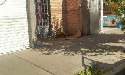 ¡Joven se colgó con una extensión eléctrica en la segunda planta de su casa en Aguascalientes!