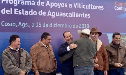¡Se impulsa viticultura del Estado de Aguascalientes con inversión de más de 9mdp!