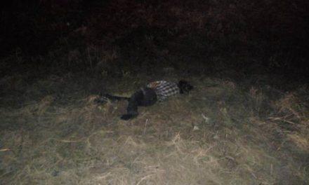 ¡Ciclista murió embestido por una camioneta en Aguascalientes!